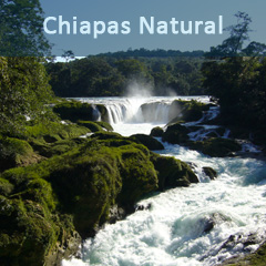 Chiapas-Natural